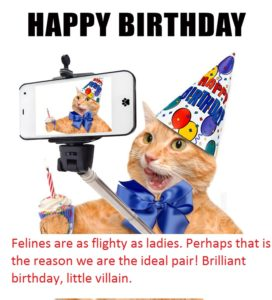 Happy-Birthday-Wishes-For-Cat-PHOTOS