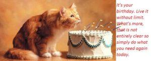 happy-birthday-cat-cake-images