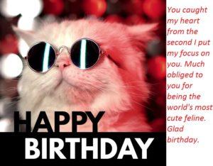happy-birthday-cool-cat-sunglasses-funny-wish-design-template